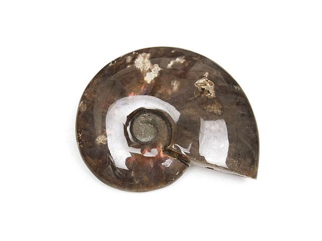ビーズ天然石マダガスカル産 アンモナイト 化石 No.10【1点もの 25,400円】とパワーストーン